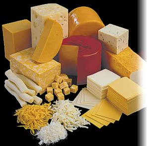 cheese_lots